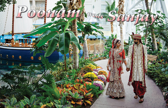 Poonam Weds Sanjay