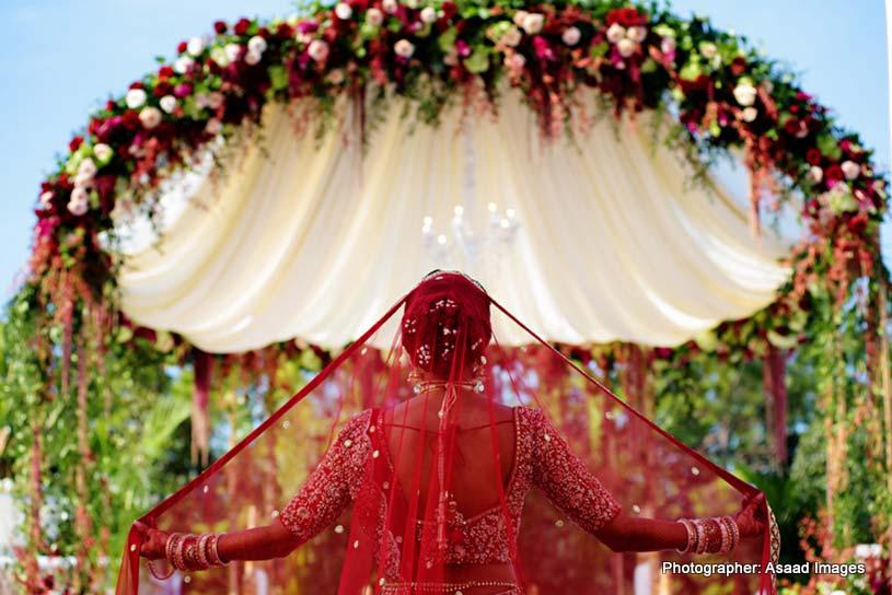 Indian Bride Chunari (Dupatta)